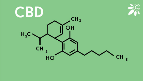 CBD kemijska struktura